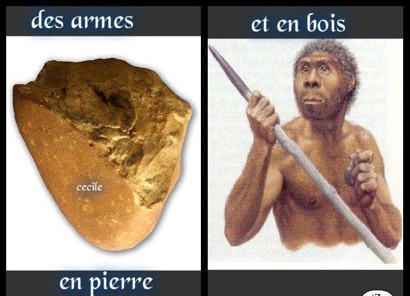 outils homo sapiens